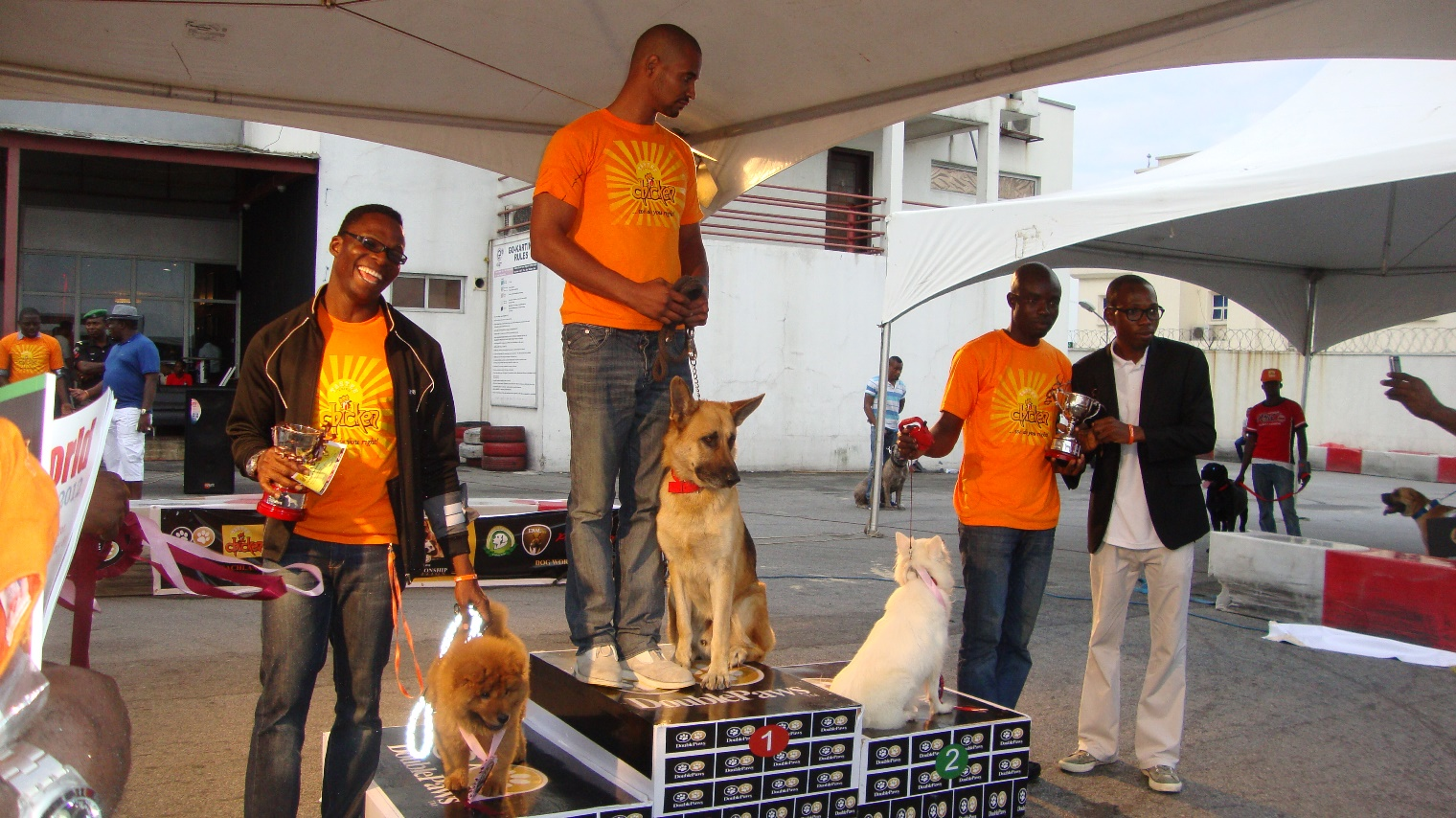 Double Paws Dog Championship