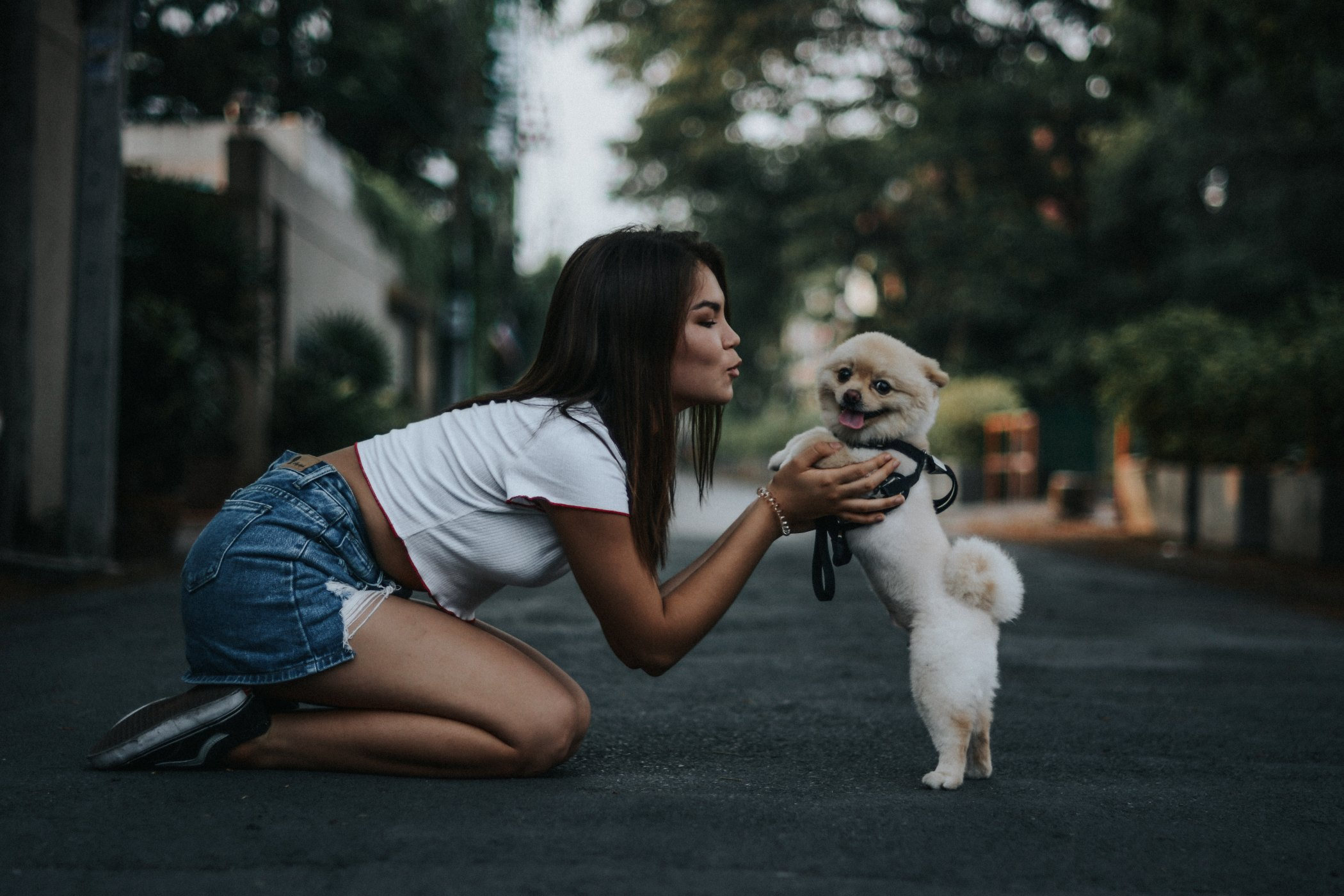 7 Possible Reasons Why Your Dog Doesn't Like You
