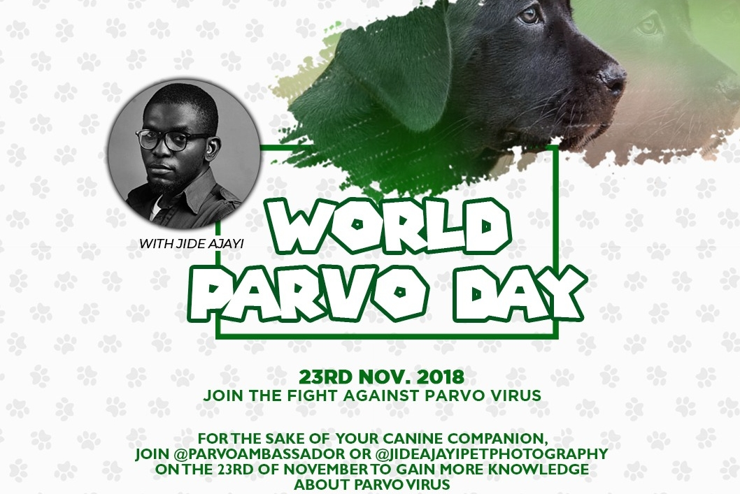Cynology week and world parvo day