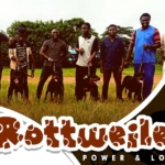 Rottweiler Dog Walk In Ibadan
